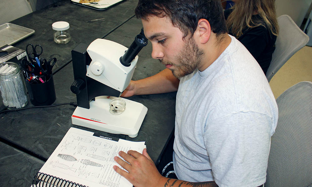 Biology Masters Program Requirements